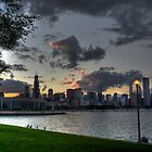 Chicago Skyline by Matt Erickson