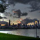 Chicago Skyline by Matt Erickson