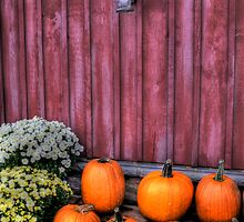 Autumn Pumpkins by Matt Erickson
