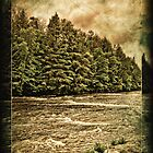 Tahquamenon River by Theodore Black
