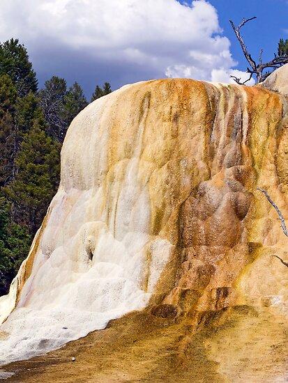 Orange Spring Mound, Closeup by Kenneth Keifer
