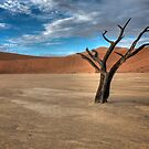 Deadvlei by Ryan Hasselbach