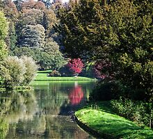 Stourhead Reflections by lynn carter