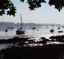 Silhouettes Over The Deben  by wiggyofipswich