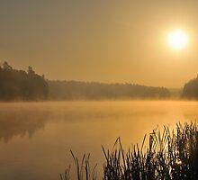 Sunrise by Kasia Nowak
