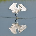 Dancing With My Reflection by Monte Morton