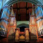 The Cathedral Organ by Kim Slater