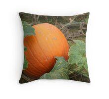 Harvest Time 2 Throw Pillow