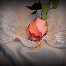 Silver Romance by wishgirl