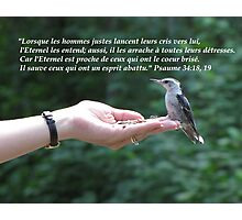Ps. 34:18, 19 fr Photographic Print