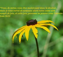 Jean 16:22 fr by hummingbirds