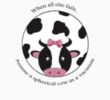 Spherical Cow T-Shirt