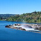 Willamette Falls Oregon City Oregon by Don Siebel