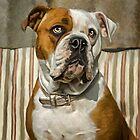 American Bulldog by ellenspaintings