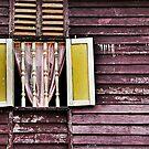 Village Window by Steven  Siow
