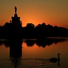 Diana Swan Sunset by Martin Griffett