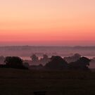 Misty morning sunrise 1, England by LisaRoberts