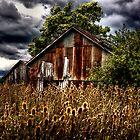 Ramshackle Barn by Bob Dilworth