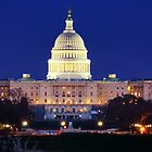 U.S. Capitol by Shelley Neff