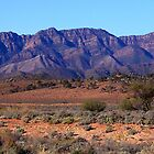 Wilpena Pound Range - West face. by Simon Bannatyne