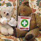 Teddy Aid! by Audrey Clarke