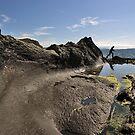 Wave Rock by David Alexander Elder