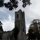 Ruins of Killowen Church, Kenmare by Coexistism