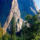 Yosemite Monolith by Tamara Valjean