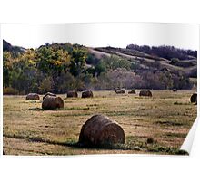 Fall In the Qu' Appelle Valley Poster