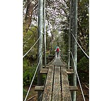 Returing across the rope bridge from Frenchmans Cap, Tasmania Photographic Print