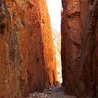 Stanley's Chasm - Northern Australia by Alex Colcheedas