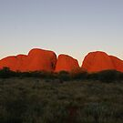 Kata Tjuta at sunset by Alex Colcheedas