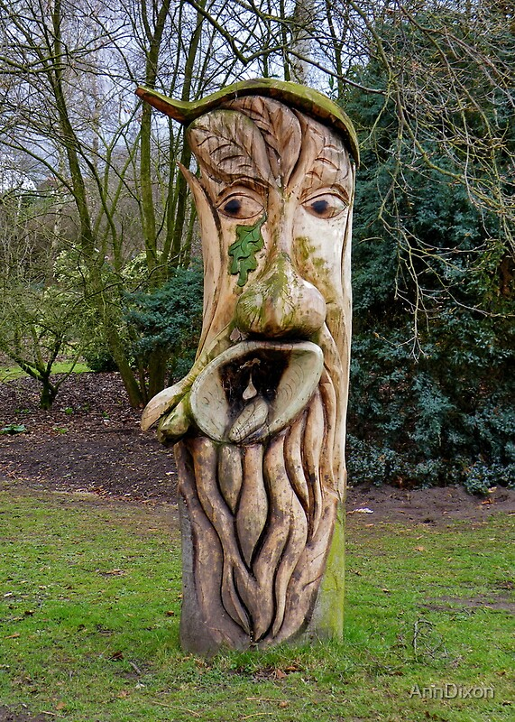 Quot face in wood tree stump by anndixon redbubble