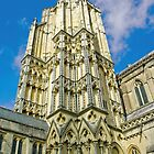 Wells Cathedral by Catherine Hamilton-Veal  ©