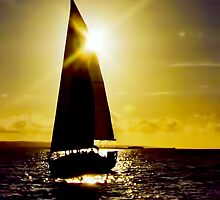 Sunset Sail by David Alexander Elder
