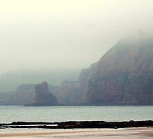 Jurasic coast line.......Devon by Lee Van Hallam