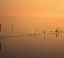 Fishing Nets IJsselmeer by Jo Nijenhuis
