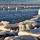 Icy Lake Eufaula, Oklahoma by Carolyn  Fletcher
