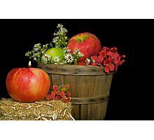 Autumn Apples Photographic Print