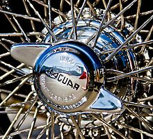 Jaguar Knockoff Spinner by MJDesignLLC