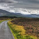 The Road To Glen Feshie by VoluntaryRanger