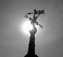 Weather Vane. St Mary's Church, Rye. by myriad1974