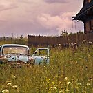 Abandoned Car by MarceloPaz