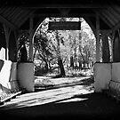 Vintage park by MarceloPaz