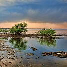 Stormy Day Lake Eufaula,Ok. by Carolyn  Fletcher