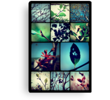 Trees I've known  Canvas Print