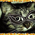 Cat Woman by Dmarie Frankulin