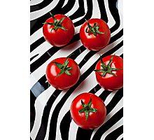 Five tomatoes  Photographic Print