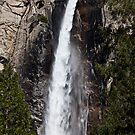 Bridalveil Fall Yosemite Valley by Garry Gay