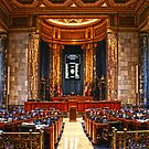 Louisiana State Senate Floor by ☼Laughing Bones☾